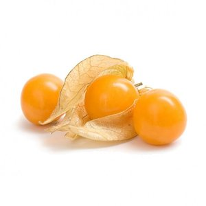PHYSALIS  AB 100G